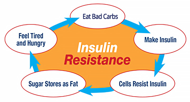 guide to Insulin Resistance – QuickDoc – Health Differently